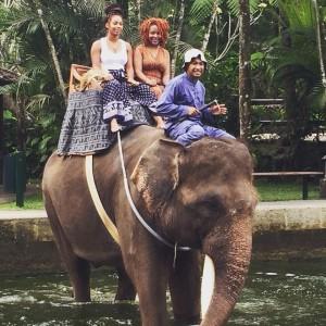 Elephant Ride in water