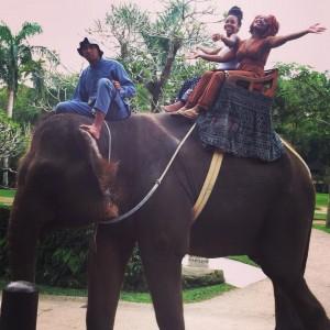 Elephant Ride on land